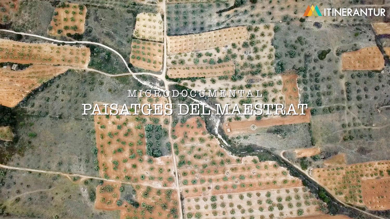 videos-documentales-mediaps-01